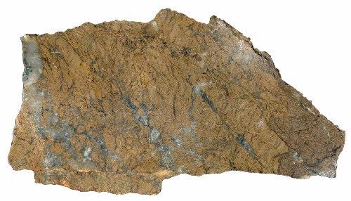 Kittilän Loukisen kultamalmia. Kivilaji grafiittipitoinen fylliitti. Mineraalikoostumus: kvartsi, rautapitoinen dolomiitti, serisiitti, rikkikiisu, grafiitti, jossa jäännöksiä(?) kloriitista. Kultapitoiset suonet kvartsidolomiittia, jossa rikki- ja arseenikiisua. Kuva-alan halkaisija 9 cm.