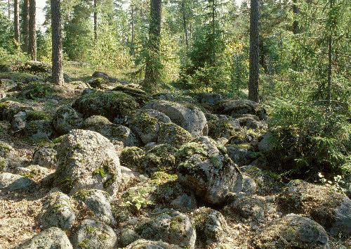 Muinaisranta, Iso-Parikas, Nuuksion kansallispuisto, Espoo.
