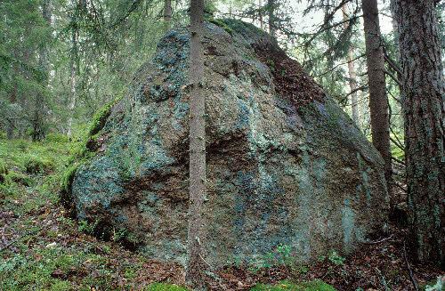 Rapakivinen siirtolohkare, Brobacka, Nuuksion kansallispuisto, Espoo.