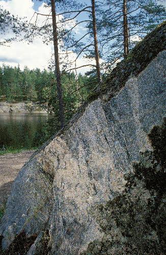 Granodioriittia Kaitalammen rannalla, Nuuksion kansallispuisto, Espoo.