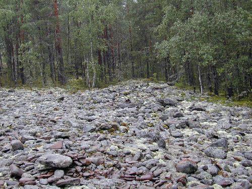 """Pienistä lohkareista koostuvaa myöhäisen Ancylusjärven rantavallia, """"pirunpeltoa"""", Pyhävuoren luoteisrinteellä."""