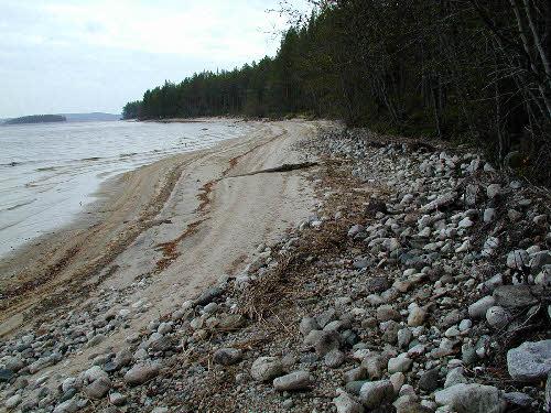 Rantavoimien huuhtomaa Pielisen rantaa.