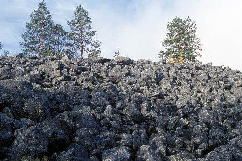 Louhikkoa Kivitunturin geologisella luontopolulla. Savukoski.