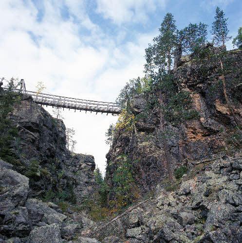 Silta yli Pirunkurun Kivitunturin geologisella luontopolulla. Savukoski.